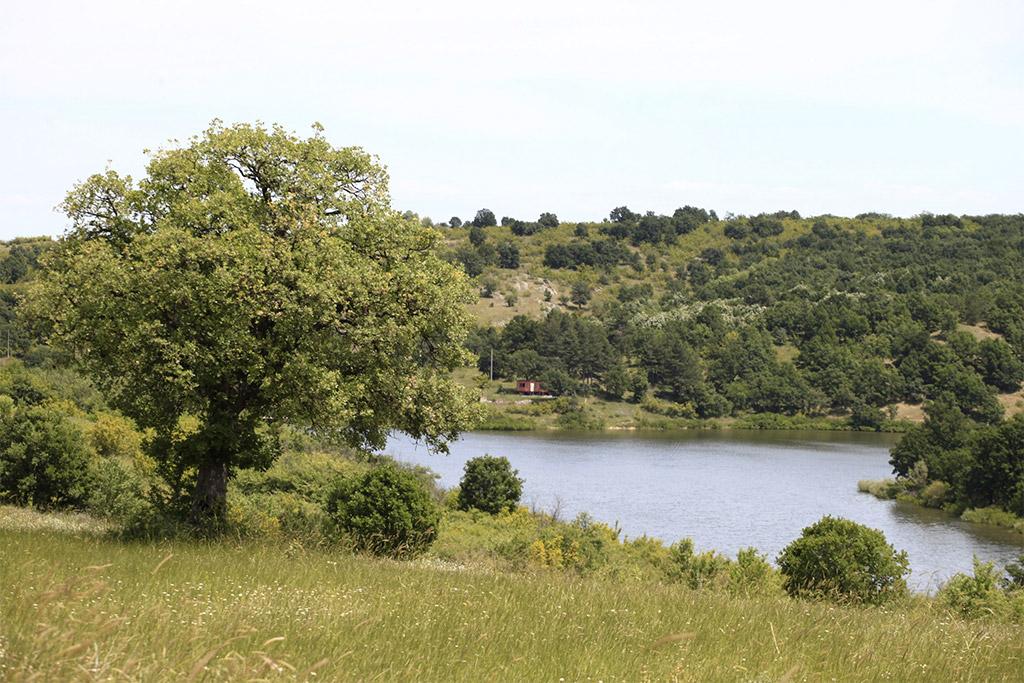 Natura 2000 protected area